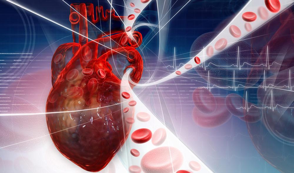 Badanie poziomu homocysteiny