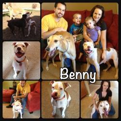 Benny's new family!