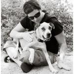 Jessie, Boxer-Shepherd mix - Medical Animals In Need (20)