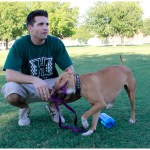 Lucky, Pit Bull Mix - Medical Animals In Need - After (34)