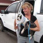 Vinnie, SAFE at the vet