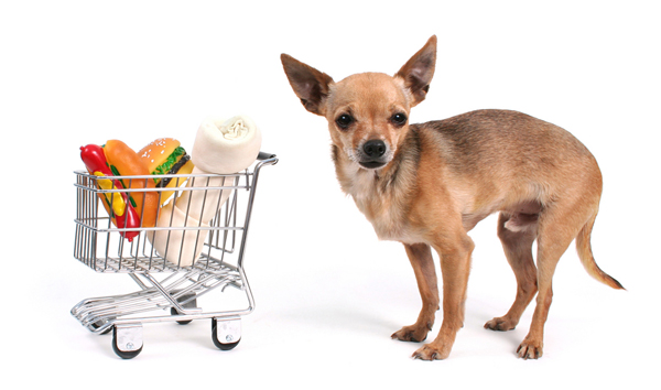 dog-grocery-store