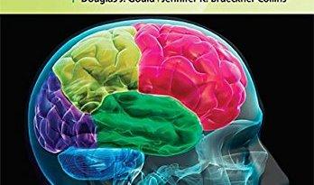 High-Yield™ Neuroanatomy (High-Yield Series) 5th Edition