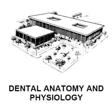 Dental Anatomy and Physiology PDF