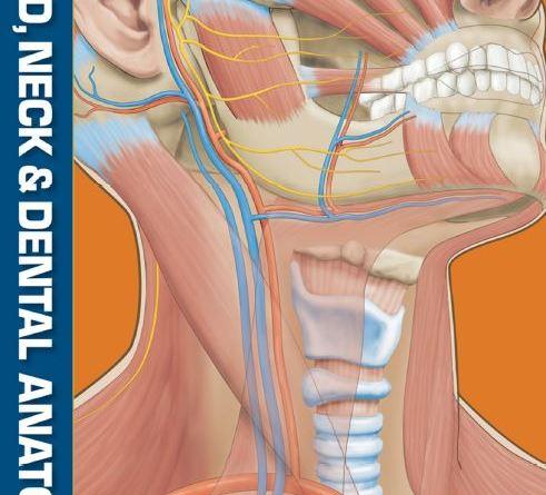 Head Neck and Dental Anatomy 4th Edition PDF