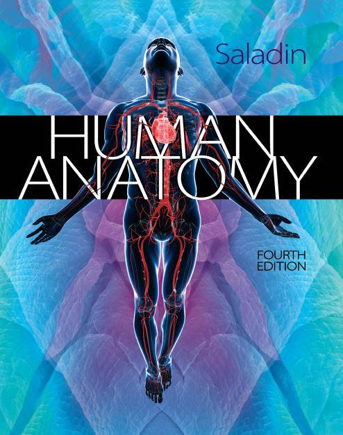Human Anatomy 4th Edition PDF