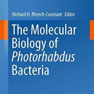 The Molecular Biology of Photorhabdus Bacteria