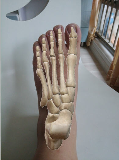 My foot as my model