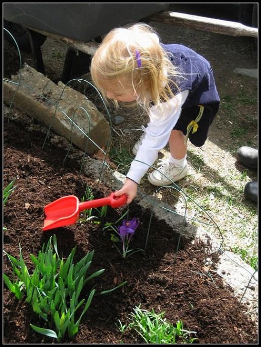 дети, садоводство