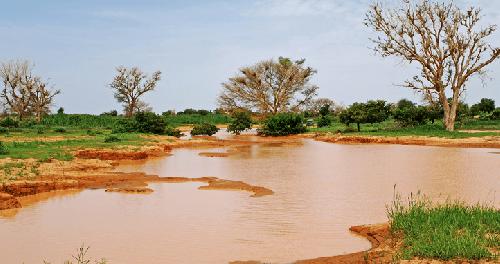 Изменения климата помогают распространяться инфекционным заболеваниям
