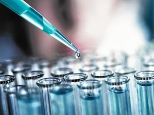 вирус Эбола, вакцина, приматы