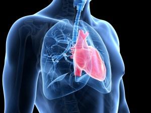 легочная артериальная гипертензия