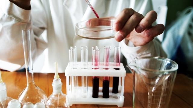 биохимический анализ крови