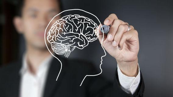 ген, головной мозг