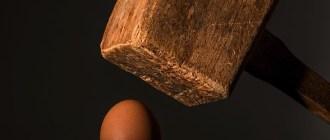 яица, холестерин, эндотелиальные клетки