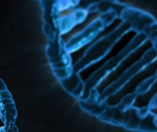 ген, познание, нервные расстройства