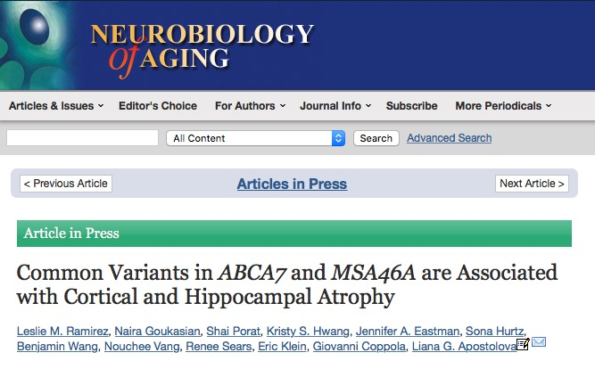 Ramirez L. M. et al. Common Variants in ABCA7 and MSA46A are Associated with Cortical and Hippocampal Atrophy //Neurobiology of Aging. – 2015.