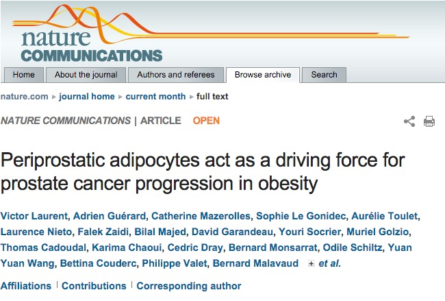 Laurent, Victor; Guérard, Adrien; Mazerolles, Catherine; Gonidec, Sophie Le; Toulet, Aurélie et al. (2016) Periprostatic adipocytes act as a driving force for prostate cancer progression in obesity // Nature Communications - vol. 7