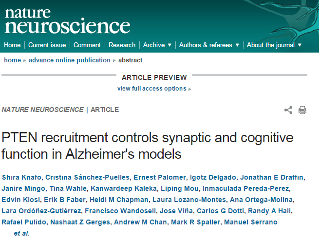 PTEN recruitment controls synaptic and cognitive function in Alzheimer's models ©
