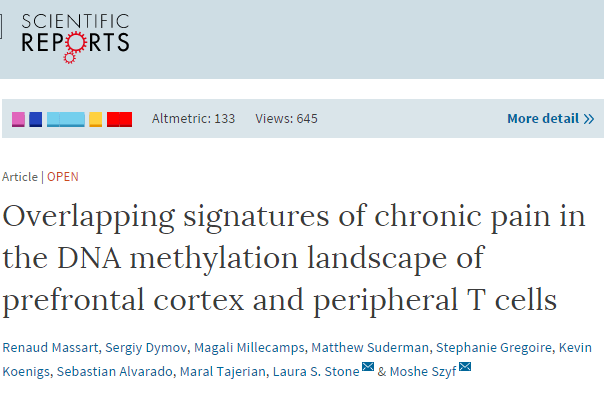 Overlapping signatures of chronic pain in the DNA methylation landscape of prefrontal cortex and peripheral T cells ©
