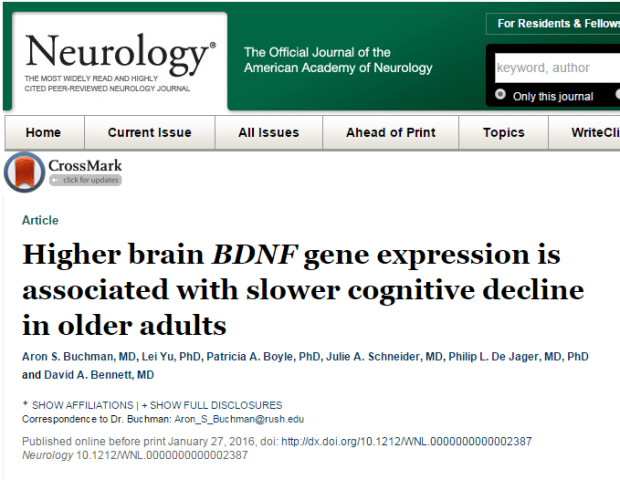 Higher brain BDNF gene expression is associated with slower cognitive decline in older adults ©American Academy of Neurology