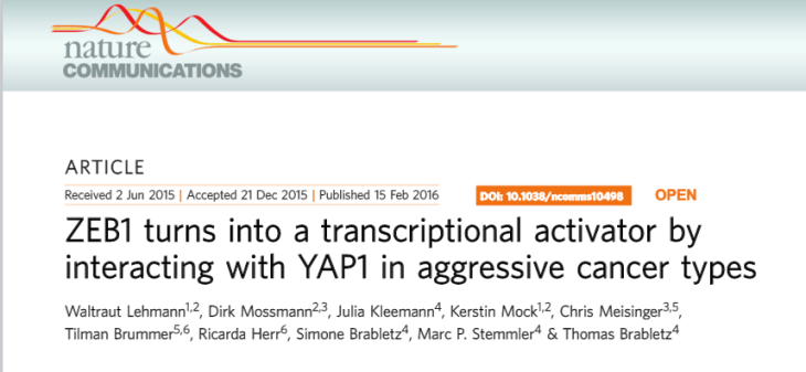 ZEB1 turns into a transcriptional activator by interacting with YAP1 in aggressive cancer types