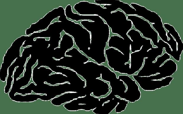 вес, когнитивные расстройства, пожилой возраст, JAMA Neurology,