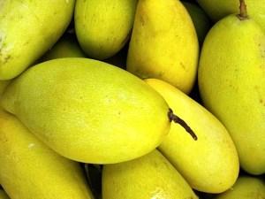 манго, галлотанин, галловая кислота, Molecular Nutrition and Food Research