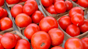 томаты, радиация, FEBS Letters, ликопин