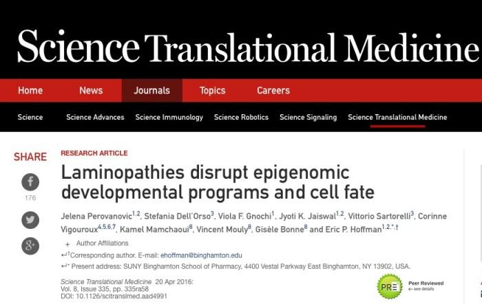 эпигенетика, мышечная атрофия, ген, Science Translational Medicine
