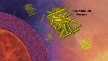 болезнь Альцгеймера, Science Signaling