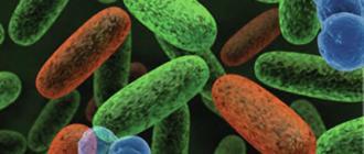 EBioMedicine, микрофлора кишечника