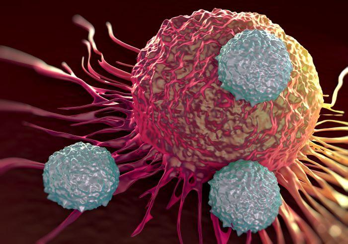 рак поджелудочной железы, Cancer Cell