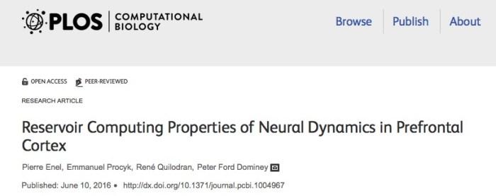 головной мозг, PLOS Computational Biology