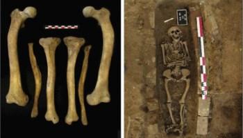 витамин D, Journal of Archaeological Science