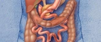 Похудение, микробиота, микрофлора кишечника, ожирение