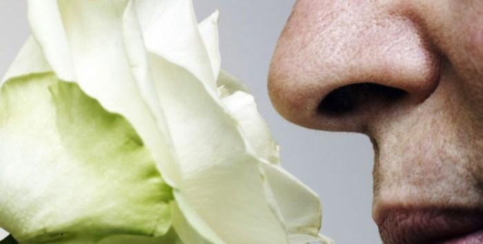 Запах, тест, деменция, слабоумие