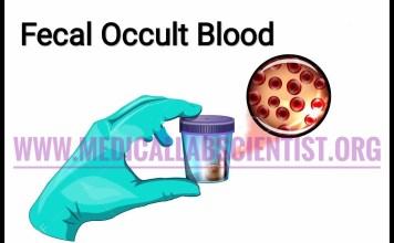 fecal occult blood test