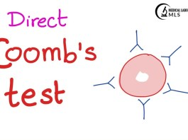 Direct Coombs Test