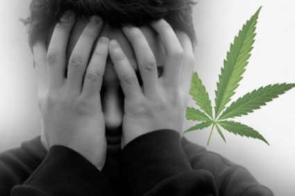 marijuana not cause mental illness