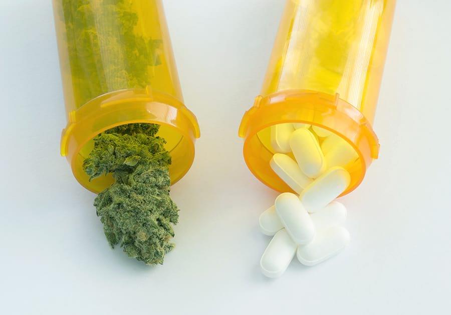 medical marijuana better than opiod