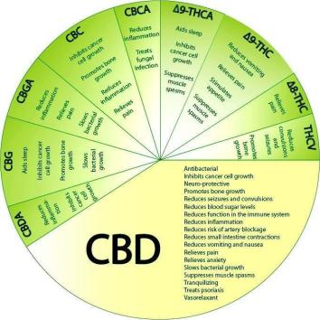 Cannabis medical chemical wheel