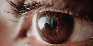 optic nerve disease
