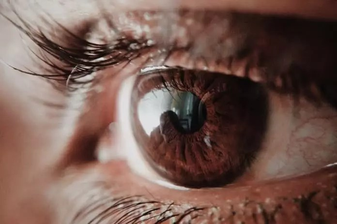 ocular syphilis