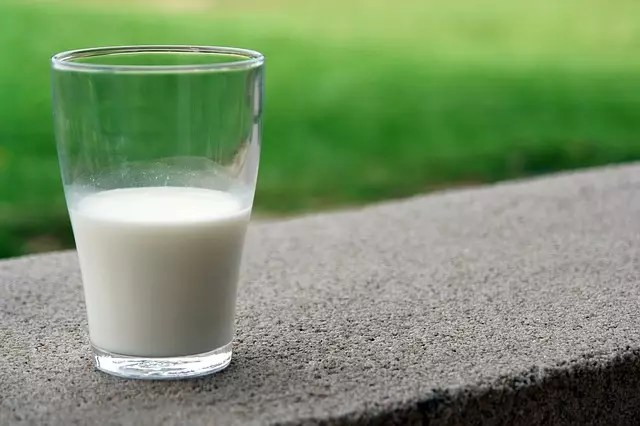 association between dairy intake and mortality
