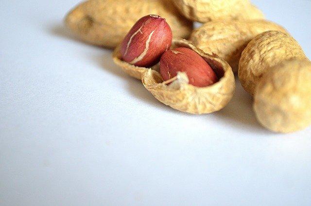 treatment for peanut allergy