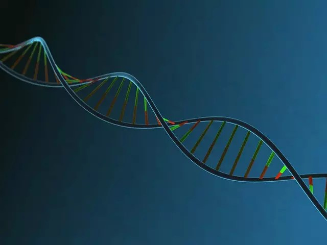 Is your DNA a good predictor of disease risk