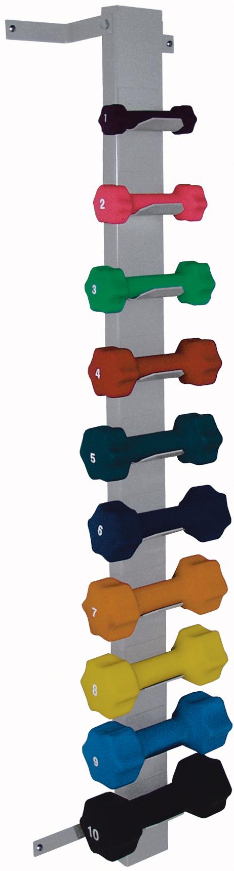wall mount dumbbell rack