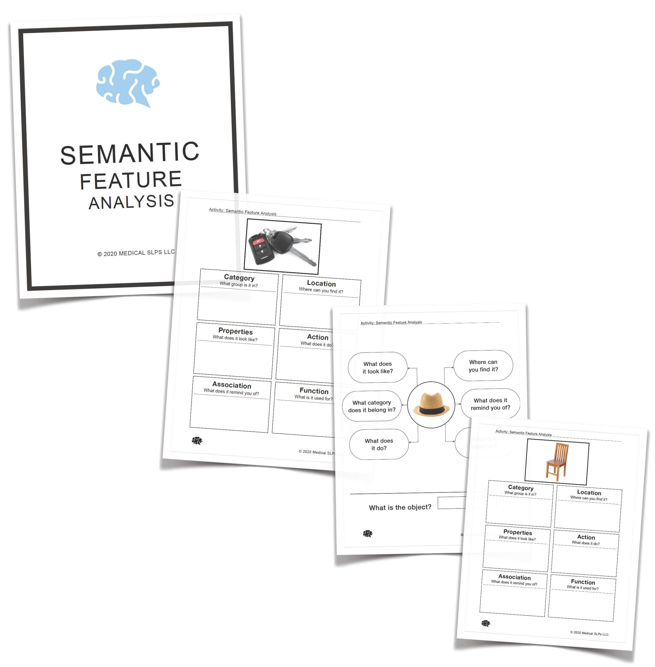 Semantic Featureysis Sample
