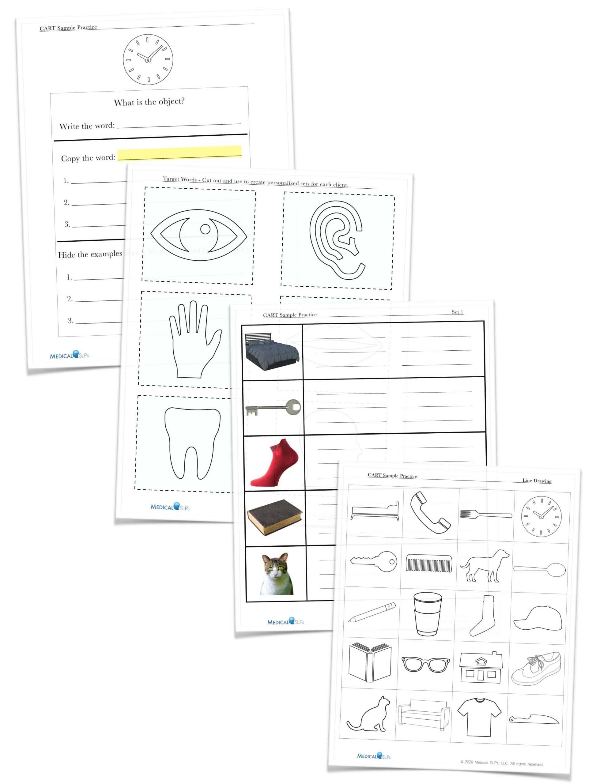 Copy And Recall Treatment Cart Worksheets